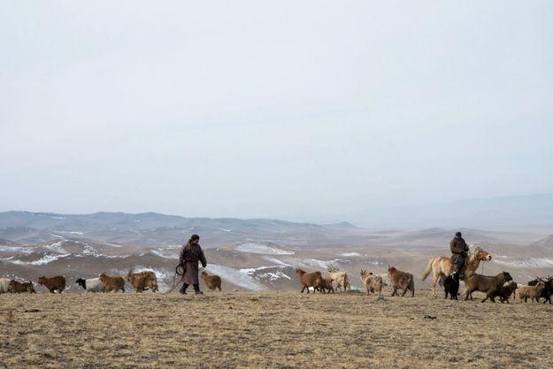 Le territoire de la Mongolie est constitué de hauts plateaux et de chaînes montagneuses. C'est ici que le duo français d'amies tricote en direct le succès de Kujten avec des acteurs locaux.