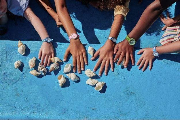 La collection Flik Flak Sea Treasures