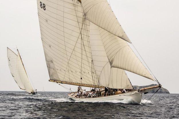 Un bateau de la Porquerolles Classique est inscrite au calendrier officiel de l'AFYT.