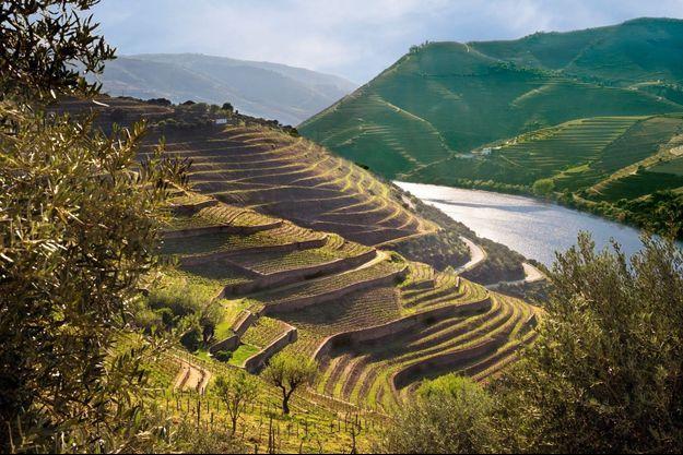 La vallée du Douro, au Portugal, fut la première région viticole au monde