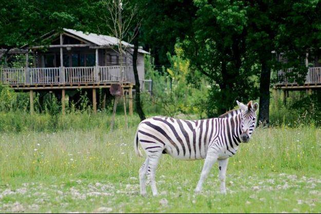 A la fois parc d'attractions et parc animalier, Le Pal, près de Moulins,