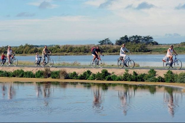 Flâner sur l'île de Ré à vélo est peut-être l'activité la plus utile pour perdre du poids.