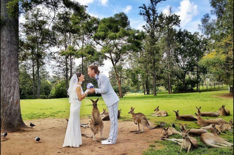 Ils se marient sur les six continents