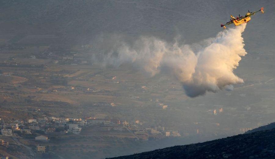 Un canadair grec lâche de l'eau pour éteindre un feu à Kouvaras à l'est d'Athènes.
