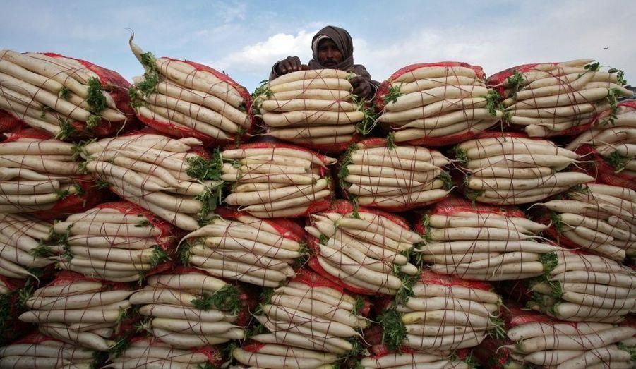 Un fermier vend des radis blancs dans un marché de Jammu, en Inde. Dans le pays, l'inflation des prix de la nourriture a augmenté pour la cinquième semaine consécutive, jusqu'à atteindre 18,3%.