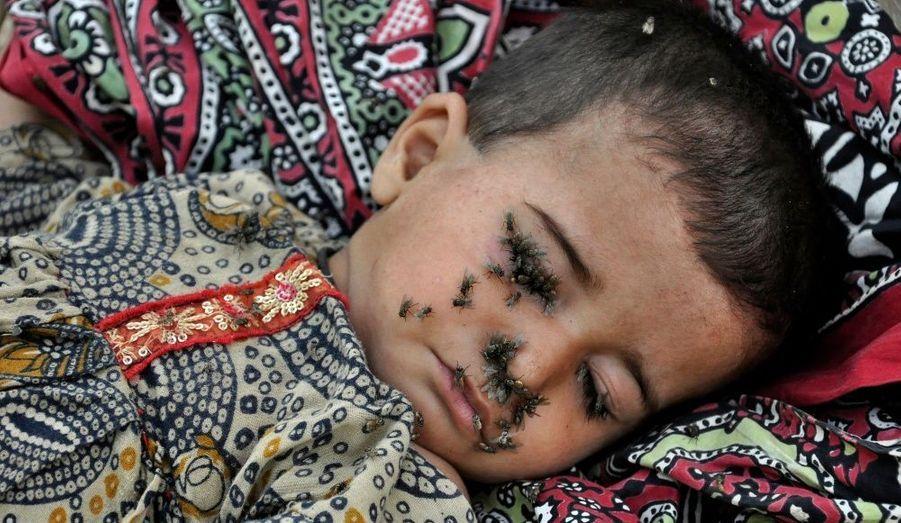 Cette Pakistanaise de deux ans, couverte de mouches, souffre de diarrhée. Allongée sur les genoux de sa mère, elle attend d'être soignée. Les Nations Unies ont averti que des dizaines de milliers d'enfants risquaient de mourir de malnutrition, à cause des eaux qui menacent d'engloutir encore d'autres villes au Pakistan.