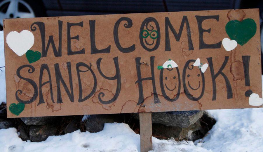 Les élèves de l'école élémentaire Sandy Hook, qui a été le théâtre d'une horrible tuerie il y a trois semaines, font leur rentrée ce jeudi. Pour l'occasion, des panneaux de soutien aux élèves et professeurs ont été dispersés sur le chemin de l'établissement. Adam Lanza y a tué 20 enfants et six enseignants, après avoir tué sa mère à leur domicile, pour des raisons qui sont encore inconnues.