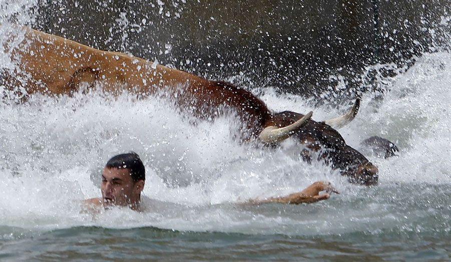 """Lors du festival """"Bous al mar"""" à Denia, sur la côte est espagnole, un taureau a forcé les barrières de sécurité et s'est jeté dans la mer en poursuivant un civil. Les organisateurs ont repêché la bête à l'aide de petits bateaux de pêcheur."""