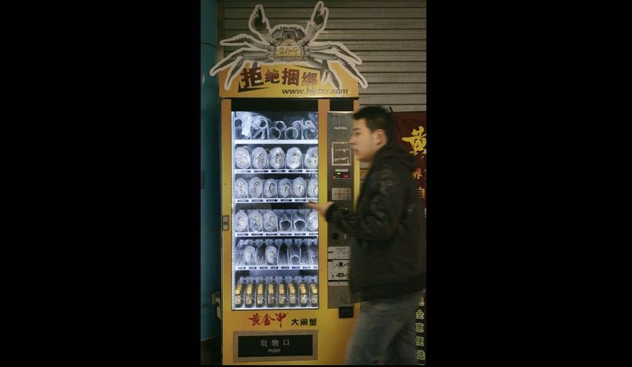 Ce distributeur d'une station de métro de Nanjing, province du Jangsu en Chine, propose des crabes frais pour les petits creux. Cette machine a été conçue il y a trois ans par Shi Tuanjie, président d'une société spécialisée dans le commerce du crabe. Installée en octobre de cette année, c'est la première dans le pays. Le crustacée vaut de dix yuans - soit environ un euro – à 50 yuans – soit environ cinq euros. Le distributeur vend en moyenne 200 crabes par jour.