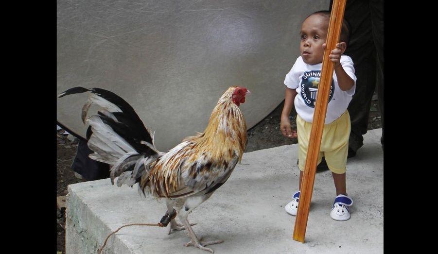 Junrey Balawing, qui vient de fêter ses 18 ans, est entré dans le livre des records. Sa croissance s'est arrêtée à l'âge de deux ans et il mesure désormais 55 centimètres. Non seulement est-il le plus petit homme vivant du monde, mais également de l'histoire.