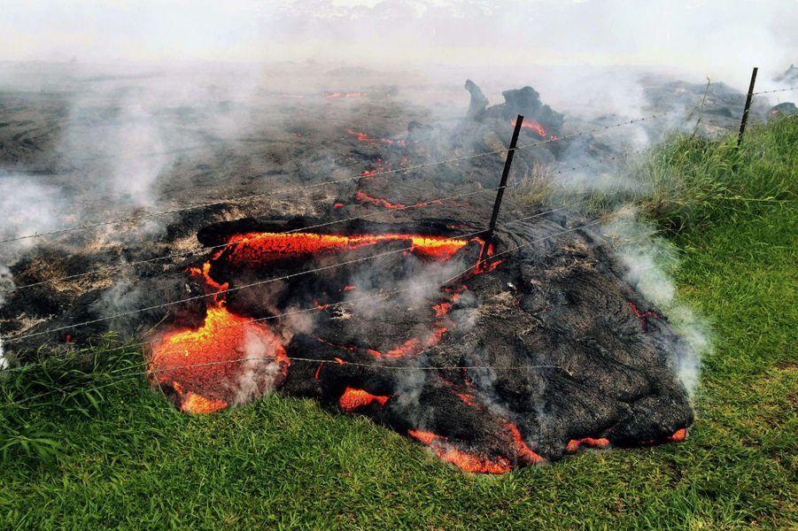 Les coulées de lave s'approchent dangereusement du village de Pahoa