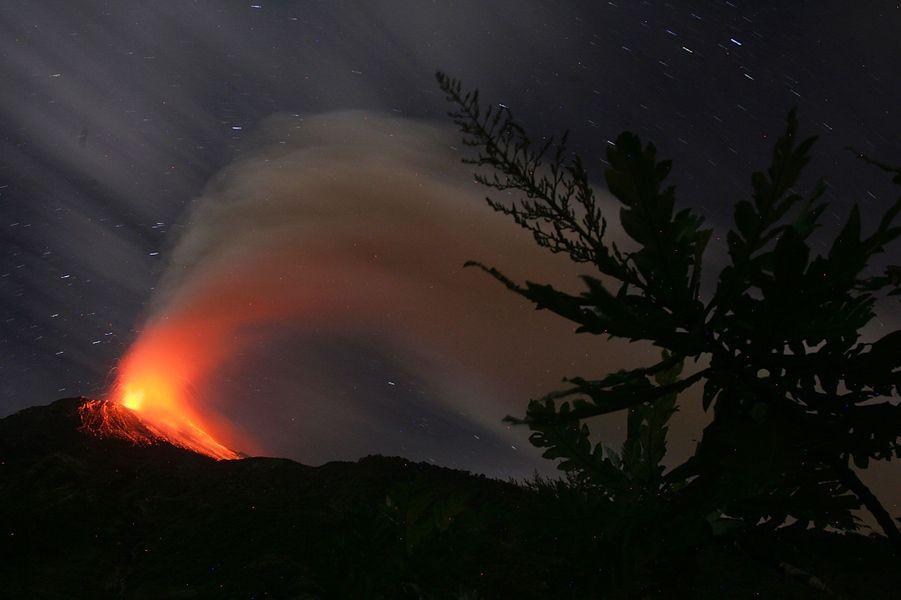 Quinze ans d'éruptions