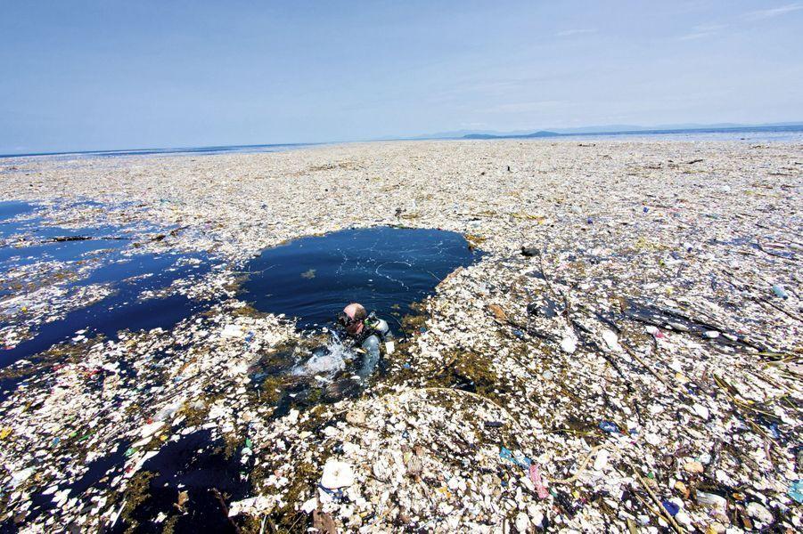 Nicolas Bach, biologiste marin britannique, explore une zone polluée au large de l'archipel Cayos Cochinos, dans le golfe du Honduras.