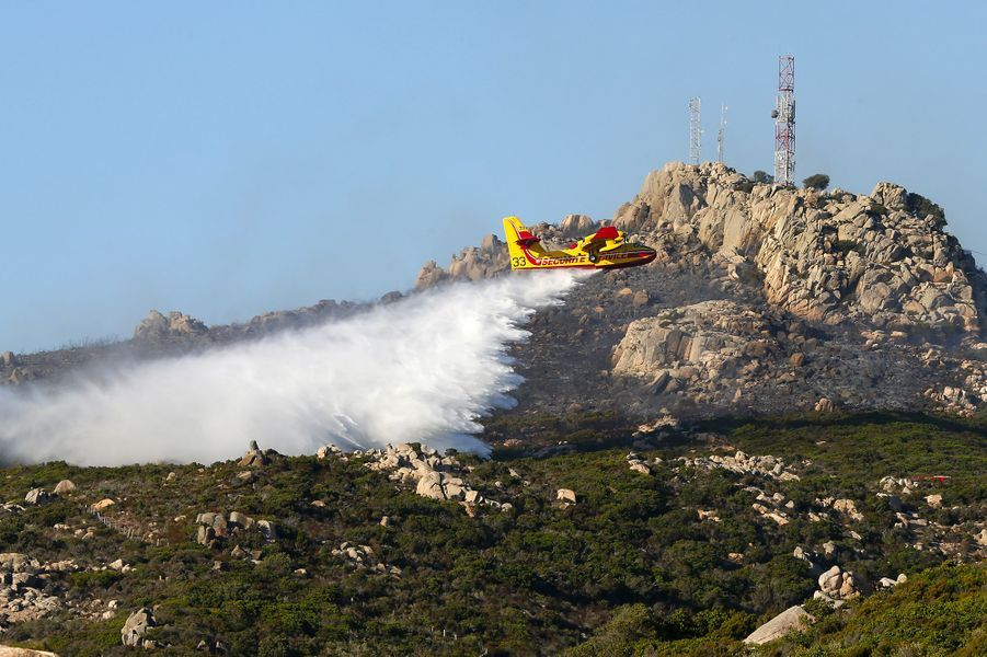 Environ 200 hectares de maquis ont été détruits dans l'incendie de Bonifacio (Corse du Sud).