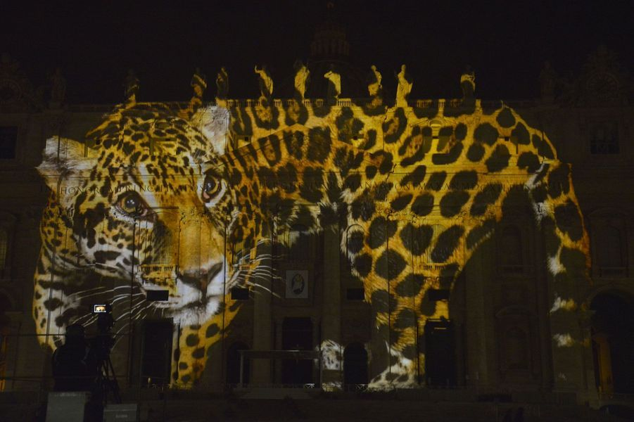 La Basilique Saint-Pierre s'illumine pour la planète