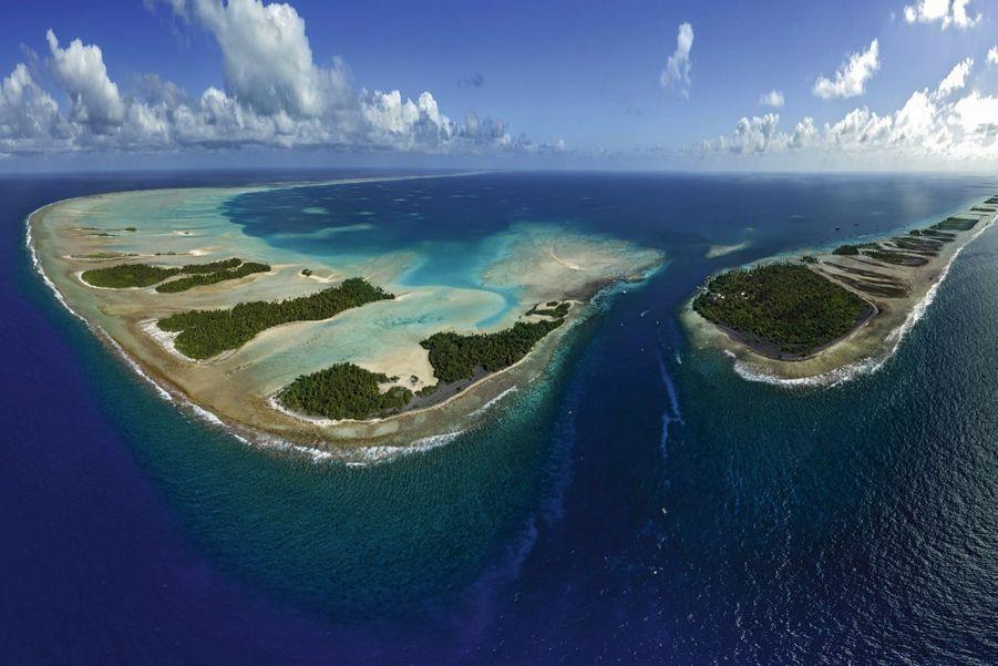 Situé dans l'archipel des Tuamotu, l'atoll de Fakarava est classé réserve de biosphère par l'Unesco. Au milieu, la passe sud où tout va se jouer : son courant modéré en fait un terrain idéal de ponte… et de chasse.