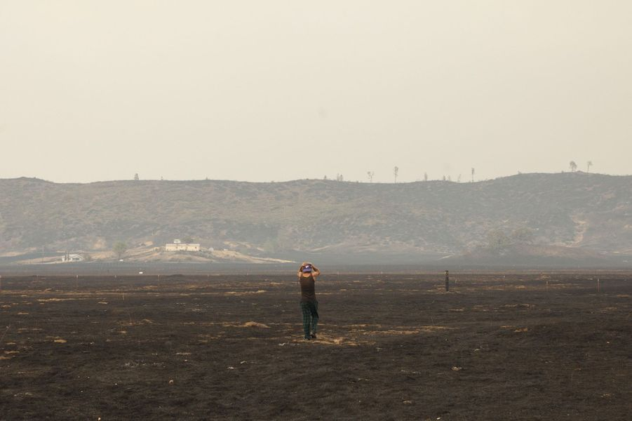 """Les conséquences du """"Valley Fire"""" en Californie"""