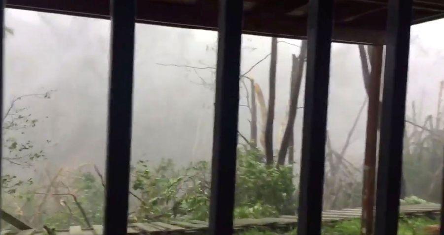 Une image issue de Twitter montre la force des vents de l'ouragan Maria à Porto-Rico, mercredi.