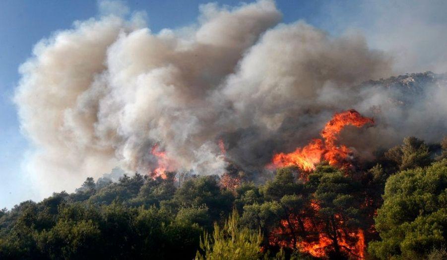 A Nea Makri, une ville côtière située en mer Egée au sud de Marathon, le feu s'étendait sur un front de quatre kilomètres, dévalant les hauteurs en direction des habitations.