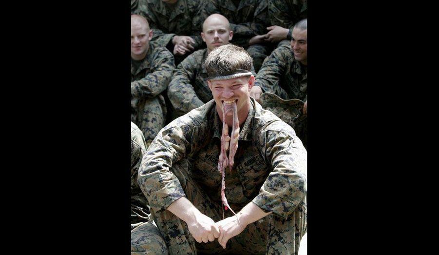 Les cobras peuvent aussi se consommer en guise de viande, ce qui n'empêche pas les Marines de s'amuser avec les entrailles des bêtes qu'ils ont réussi à capturer, comme l'atteste cette photographie prise ce lundi 13 février.