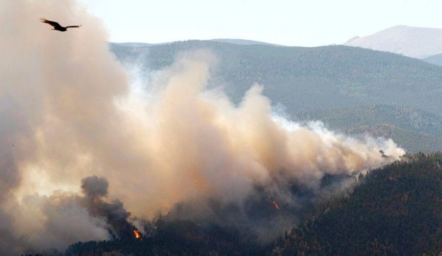 Les parcs nationaux du Colorado sont ravagés par les flammes.