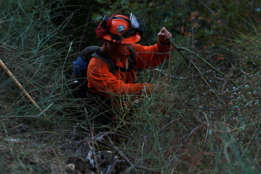 En Californie, les flammes menacent Santa Cruz