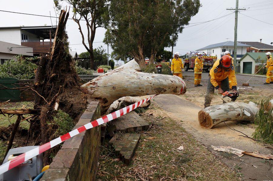 Des orages destructeurs ravagent Sydney