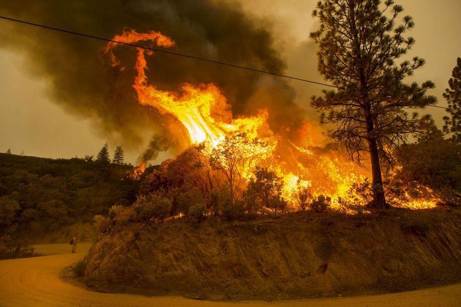 La Californie dévastée par les flammes