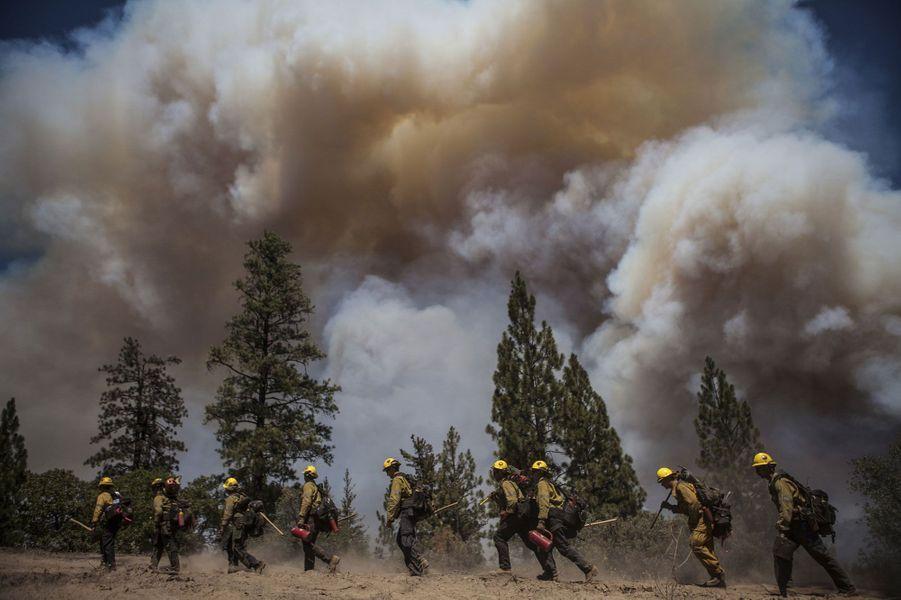 Incendies: la Californie en état d'urgence