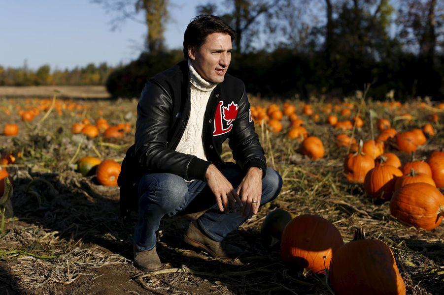 Justin Trudeau à la recherche d'une citrouille à Gatineau, en octobre 2015