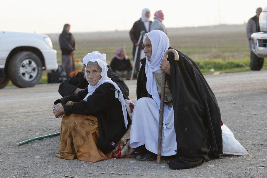 Plus de 200 yézidis libérés