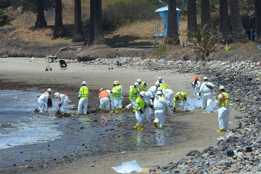 La mystérieuse marée noire qui touche la Californie