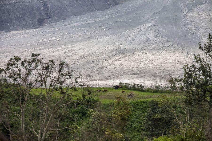 La vie dans l'ombre du mont Sinabung