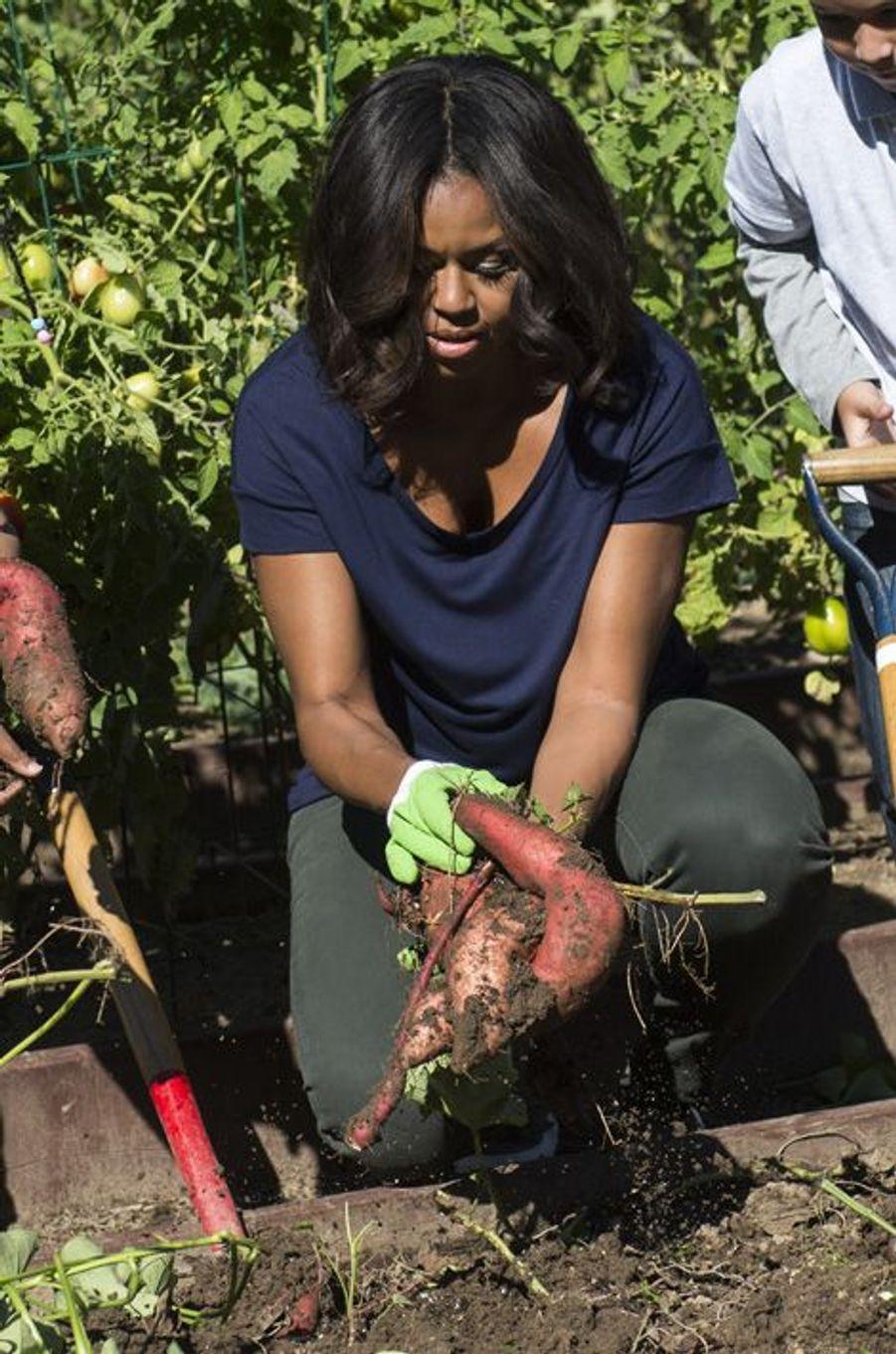 Michelle Obama a organisé, mardi, une session jardinage avec des écoliers de Washington