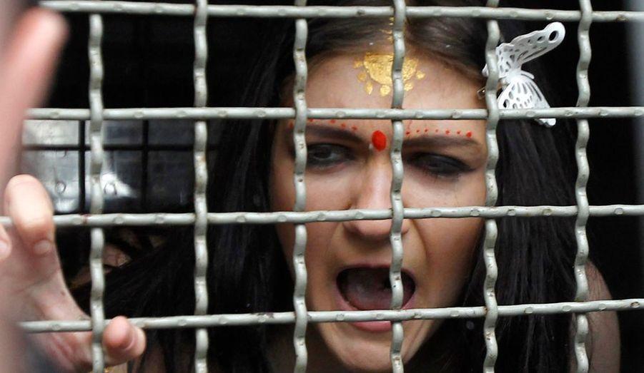 Le 18 janvier, la police a arrêté les quatre jeunes femmes qui ont dénoncé les décisions radicales de l'ambassade indienne à Kiev. En effet, les autorités indiennes ont décidé de restreindre le nombre de visas accordés aux jeunes ukrainiennes afin d'endiguer la prostitution.
