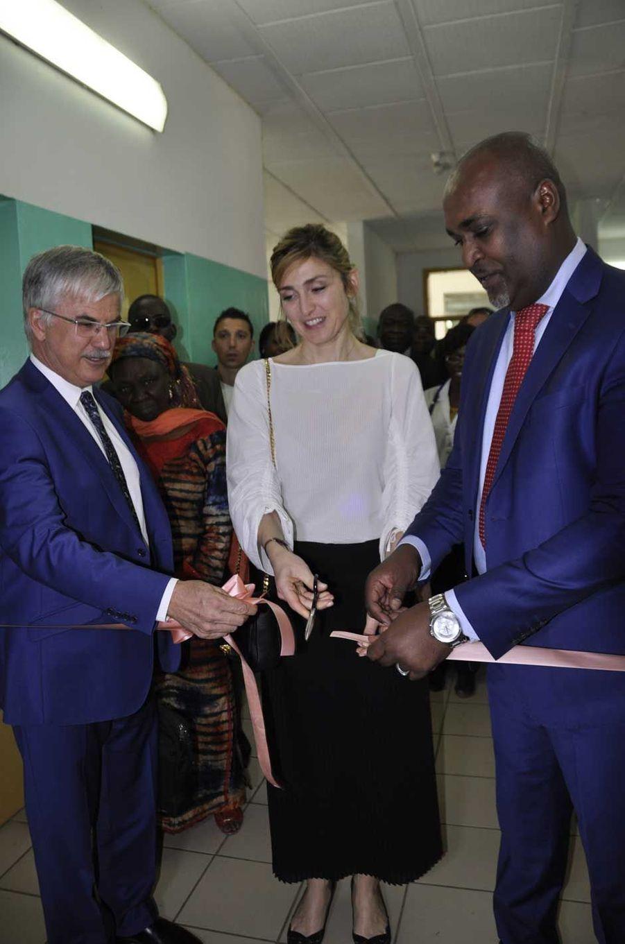 Le 24 janvier, Julie Gayet inaugure symboliquement une salle de soins au BS en présence de Philippe Lacoste, ambassadeur de France au Tchad, et du ministre tchadien de la santé publique, Aziz Mahamat-Saleh Ahmat.