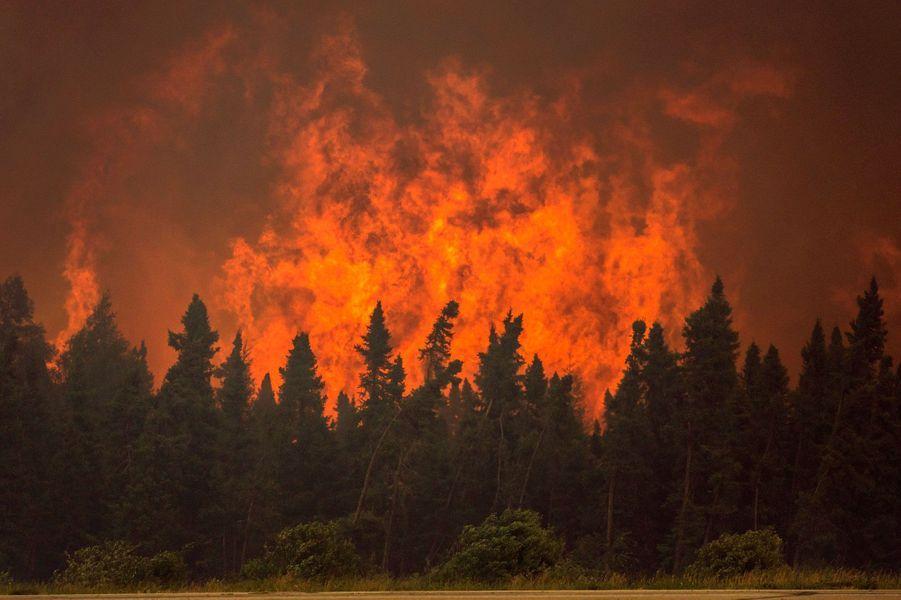 Une centaine d'incendies ravage l'ouest du Canada