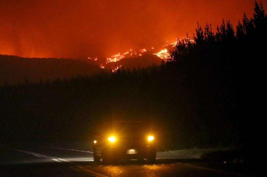 Les plus importants feux de forêt de l'Histoire du Chili.
