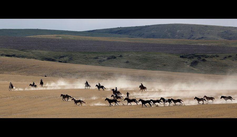 Le ranch des Mantle s'étend sur des centaines d'hectares dans un écrin de montagnes splendides.