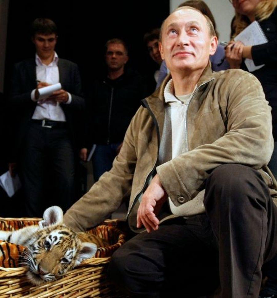 Nombreuses sont les photos de Vladimir Poutine avec ce qui semble être son animal fétiche, le tigre. Tout un symbole. Sur ce cliché, il présente à la presse le dernier né du zoo de Moscou, venu lui rendre une visite pour son anniversaire, en 2008.
