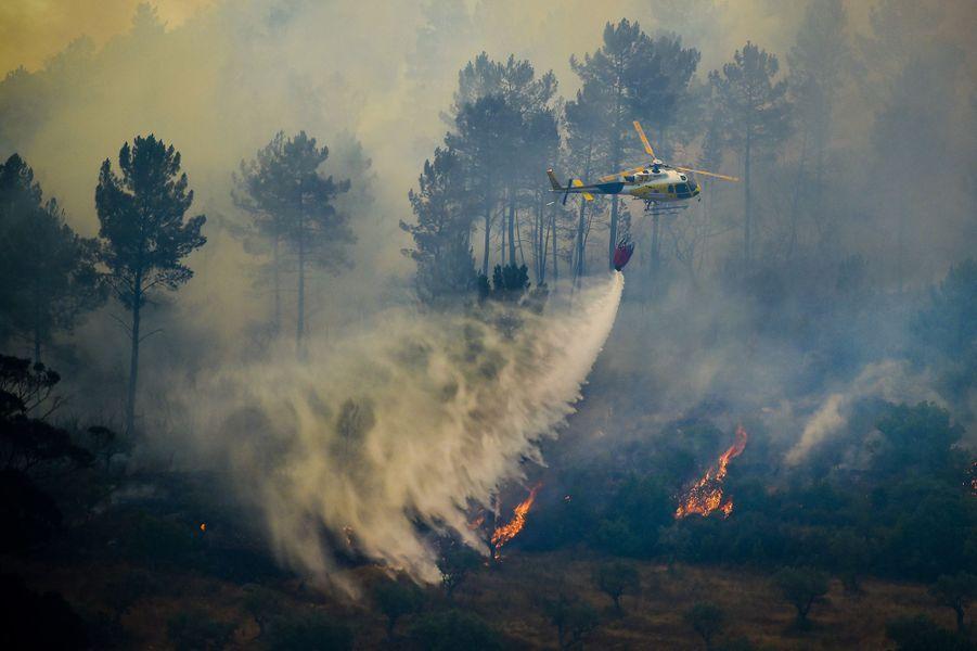 Le Portugal lutte contre de nombreux incendies