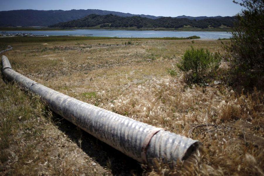 La Californie, à bout de soif