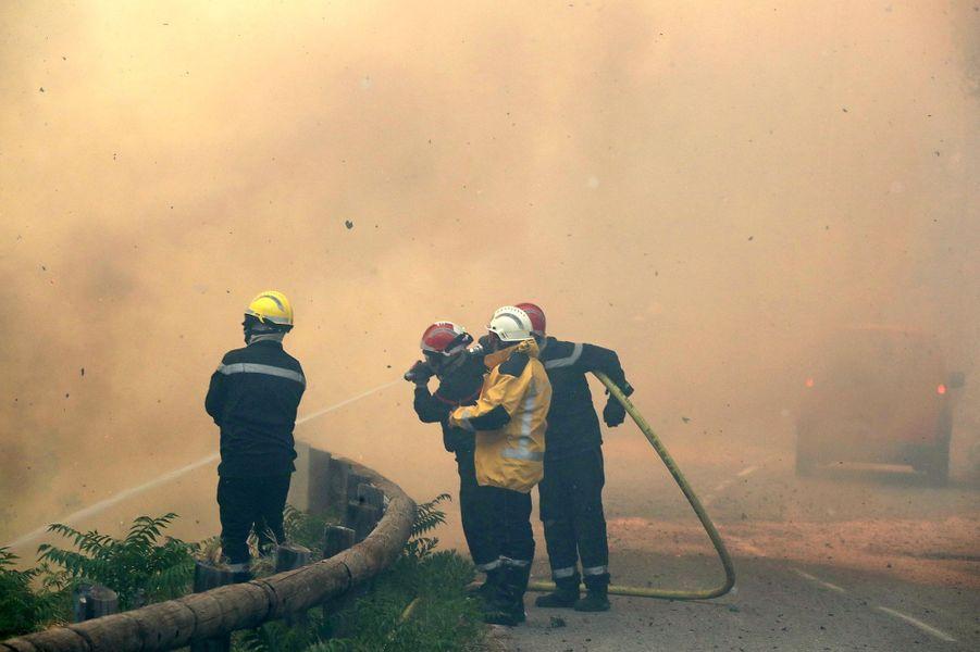 L'incendie a ravagé une centaine d'hectaresà Castagniers (Alpes-Maritimes)