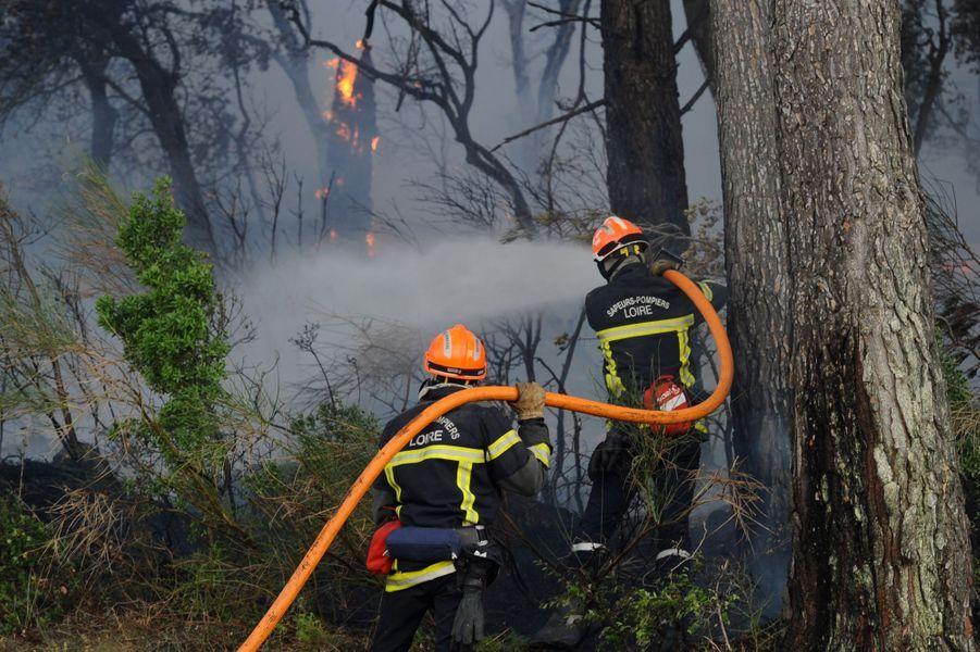 """L'incendie de Saint-Cannat stabilisé après une nuit """"intense"""", dans les Bouches-du-Rhône."""