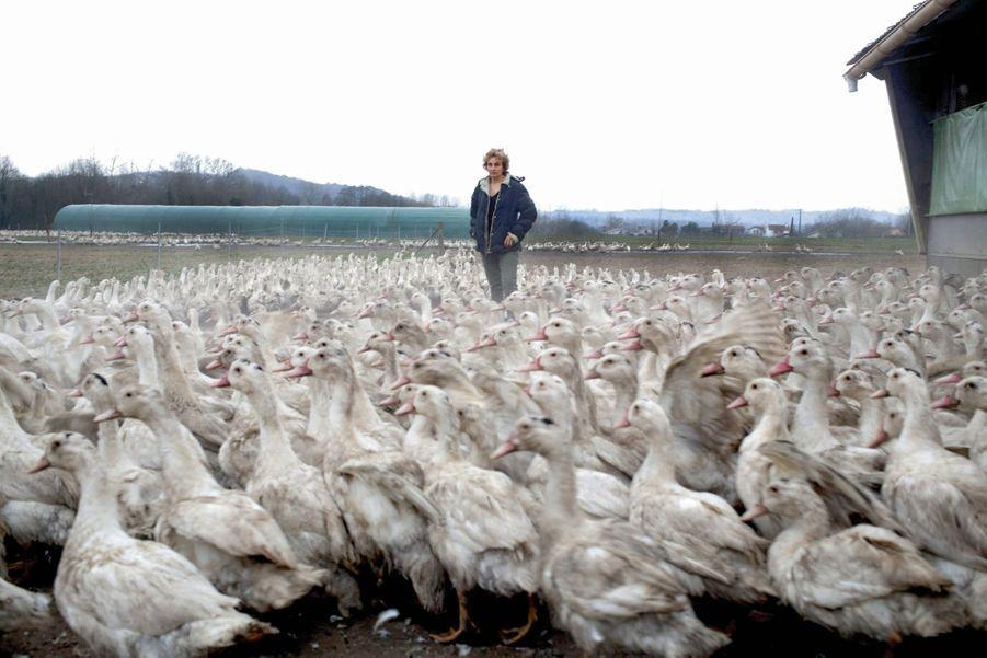 Catherine Lapègue et son élevage à Saint-Etienne-d'Orthe, dans les Landes, le 23 février. Deux jours plus tard, il ne restait aucun de ses 4 600 canards.