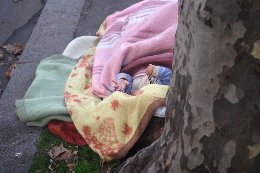 """(Paris, bd Richard Lenoir, le 7 octobre 2013) """"Plein d'enfants, cartable sur le dos, et leurs parents prenaient le chemin de l'école au moment où j'ai pris cette photo. A trois mètres d'eux, il y avait cette famille parmi tant d'autres qui dormaient dehors. J'ai trouvé ça dingue! Ce bébé dormait près de ses parents, cachés par l'arbre."""""""