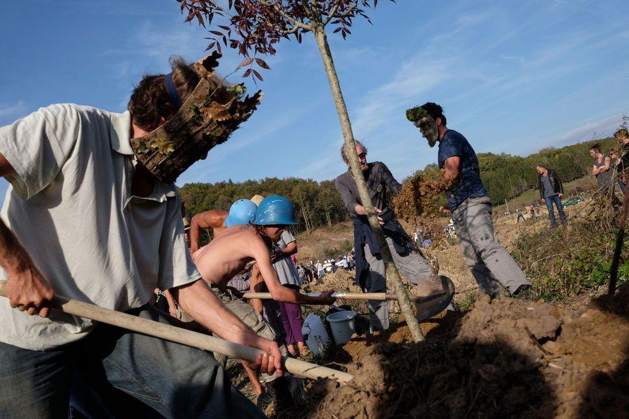 Dans l'aprè-midi du 2 novembre. Outre la cérémonie d'adieu au jeune botaniste, de nombreuses plantations d'arbres ont été prévues. Ici, un frêne rouge.
