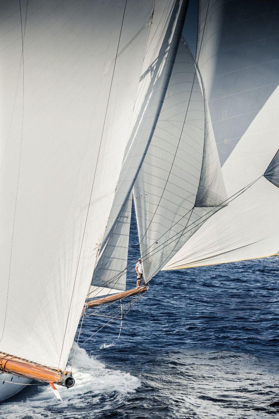 « Elena of London » vient d'envoyer son spi de 1 000 m2, à 25 noeuds. C'est le plus imposant des bateaux engagés dans la catégorie des Grands Tradition. Perché sur sa vergue, le « singe », spécialiste des virements de bord, dirige la manoeuvre.