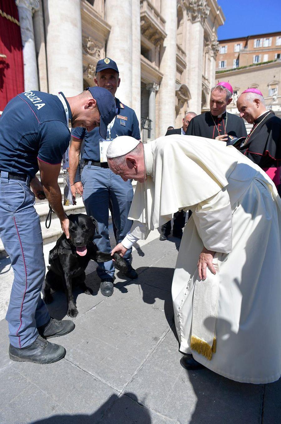 Leo le labrador noir, qui appartient à une brigade canine de la police, a été reçu par le pape François samedi.