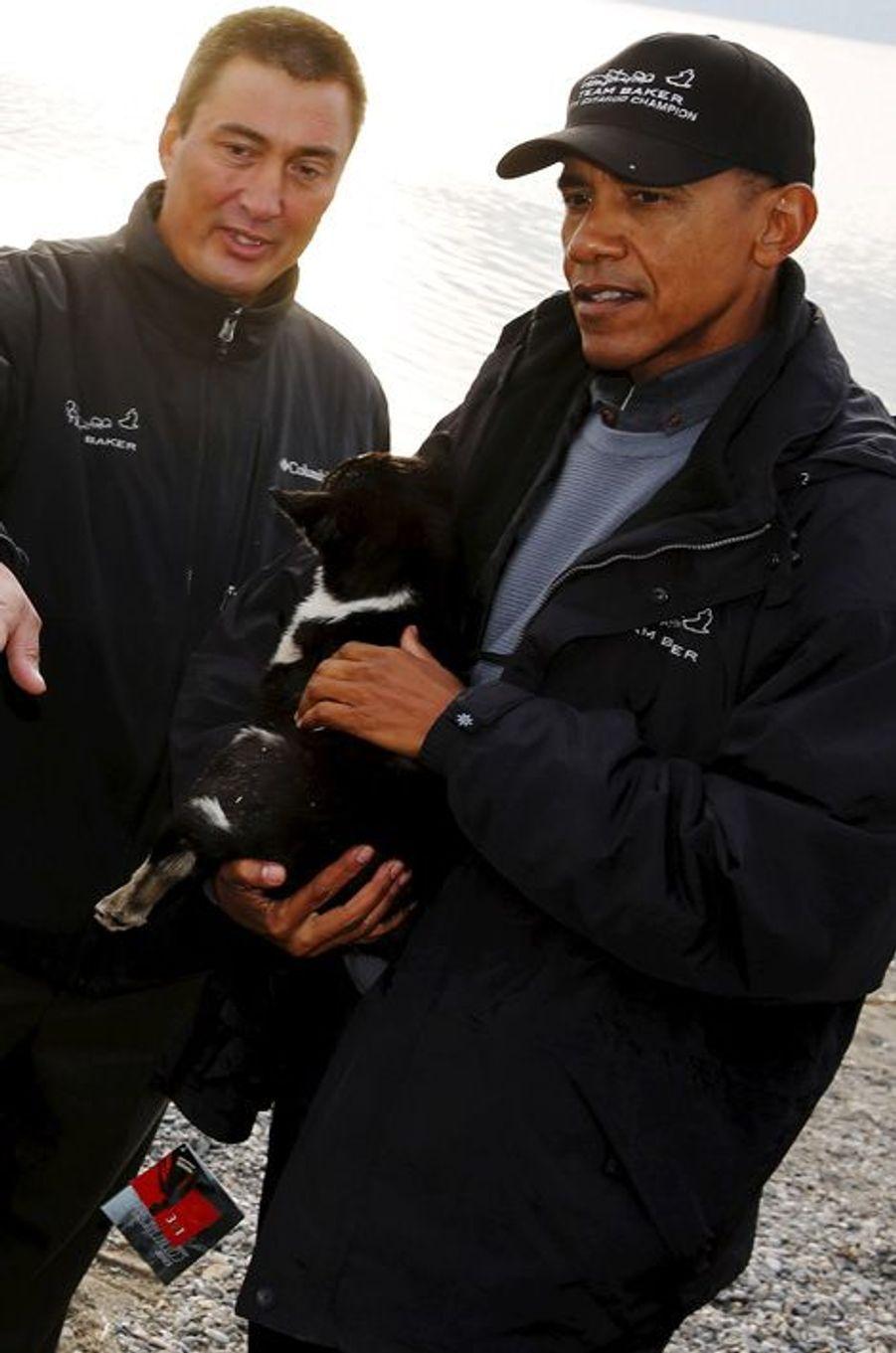 Barack Obama attentionné avec les chiens de compétition en Alaska